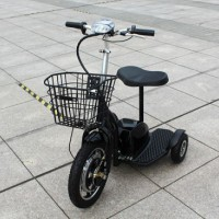 Factory 350W 500W Good Quality Motor Tricycle Electric Hot Model