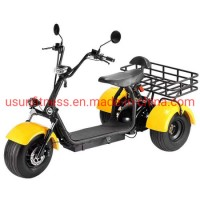 Adult Electric Tricycle Big Three Wheel 1500 W Sports Motor Tricycle for Adult