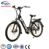 205W Rear Brushless Moter Electrical Bicycle
