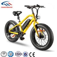2018 New Model Fat Elec Bike for Sale
