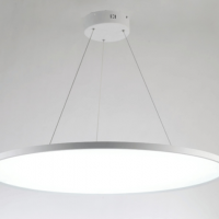 Large round ultra thin panel lamp  300mm 500mm 600mm 900mm