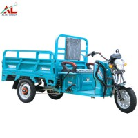 Al-A3 Best Sale Adults Electric Tricycle Cargo Europe on Sale