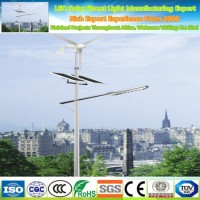 Factory Price Wholesale LED Street Light Solar Panel Lamp Pole with Accessories Remote 50W LED Solar