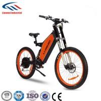 Electric Dirt Bike 48V1500W